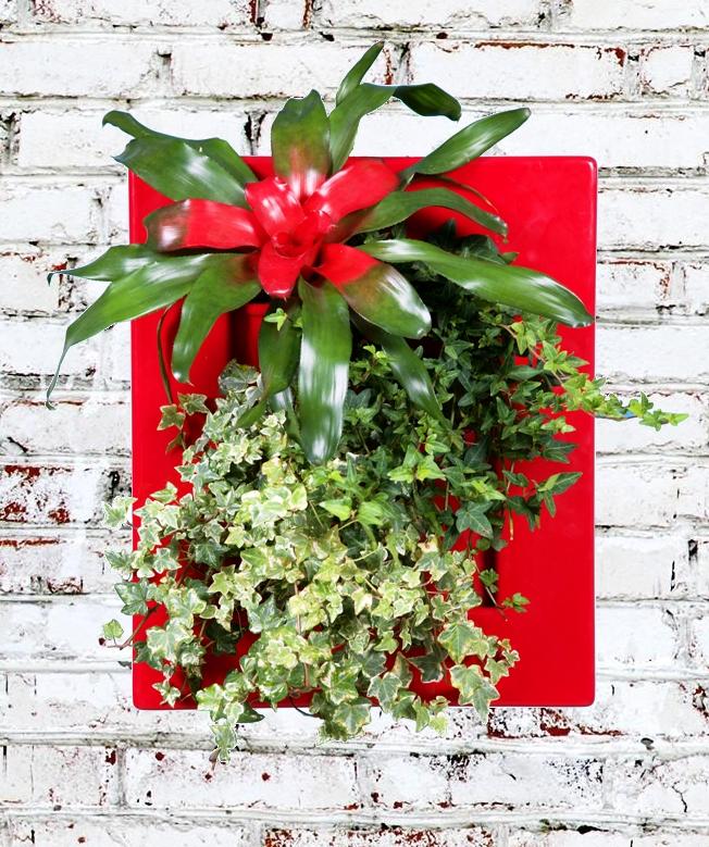 Decorare le pareti con fiori e piante veri. Biovertigo
