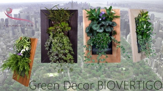 biovertigo frame green decor mailing 800